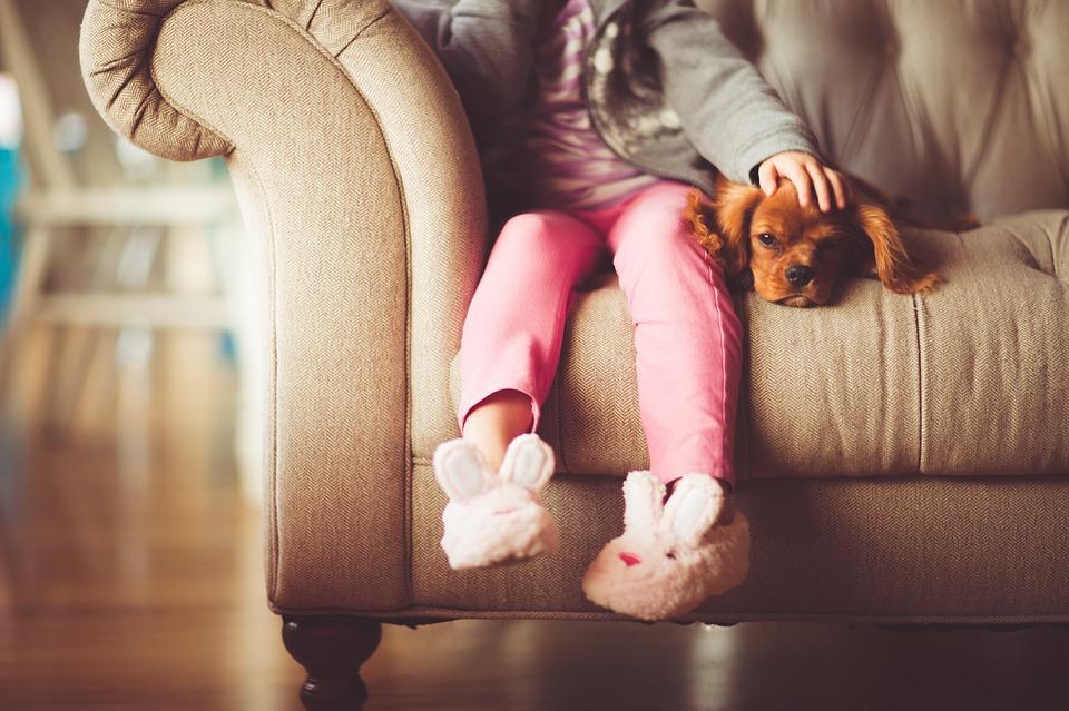 どこか寂しさを覚えているあなたへ。ペットは大きな癒しの源 アイキャッチ画像