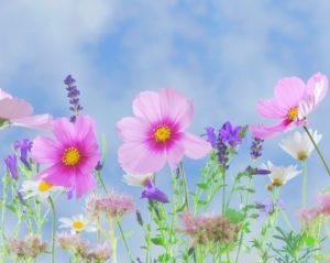 笑顔あふれる春夏コーデ♡素敵な出逢いも逃さない! アイキャッチ画像