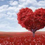恋を叶えたい♡恋愛にご利益のある関東の縁結び神社7選