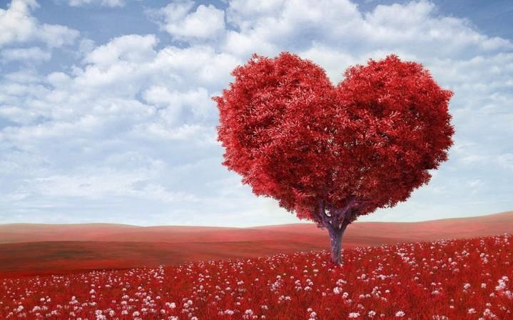 恋を叶えたい♡恋愛にご利益のある関東の縁結び神社7選 アイキャッチ画像