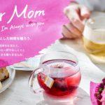 母の日のプレゼントはスタバの紅茶【ティバーナ】がおすすめ!どんなフレーバーが人気なの?
