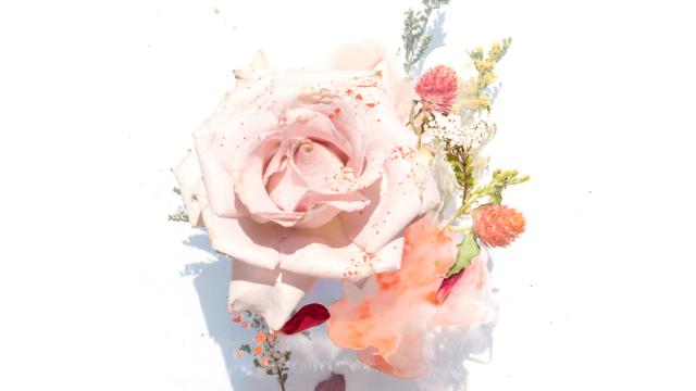 ボタニカルなバラ