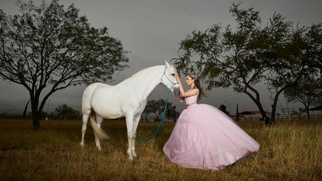 馬を撫でる女性