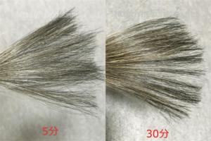 ブラック染毛力の使用例1