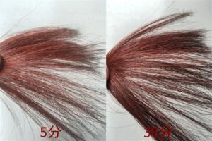 ブラウン染毛力の使用例1
