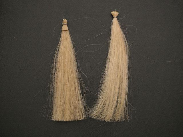 白髪とブリーチ毛の比較
