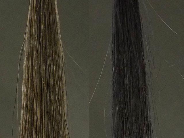 ブリーチ毛と白髪の染まり方