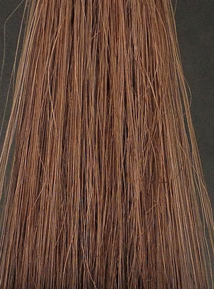 LPLP1回染毛